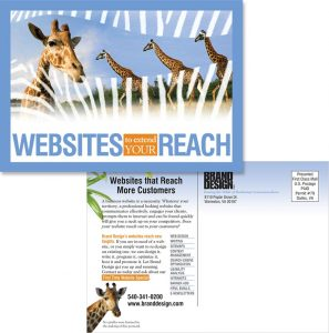 Brand Design, Inc. in Warrenton VA Website Design and Programming Services Postcard