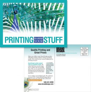 Brand Design, Inc. in Warrenton VA Printing services postcard